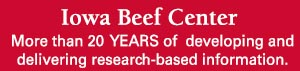 IBC -- More than 20 years of working to develop and deliver research-based information